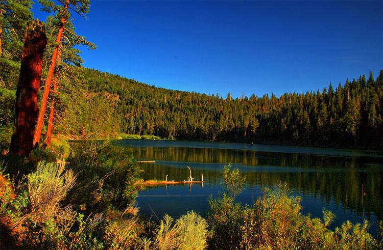 Национальный лес модок калифорния
