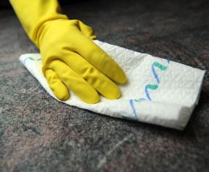 kw 12 , ciscenje preproge s papirnato brisaco , foto: Sasa Pahic Szabo