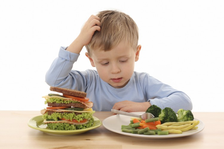 o what three facts about the excess or lack of micronutrients in a fast food diet